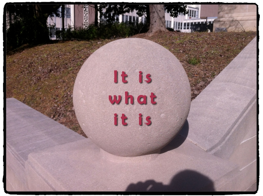 """It is what it is"" and the meaning of life."